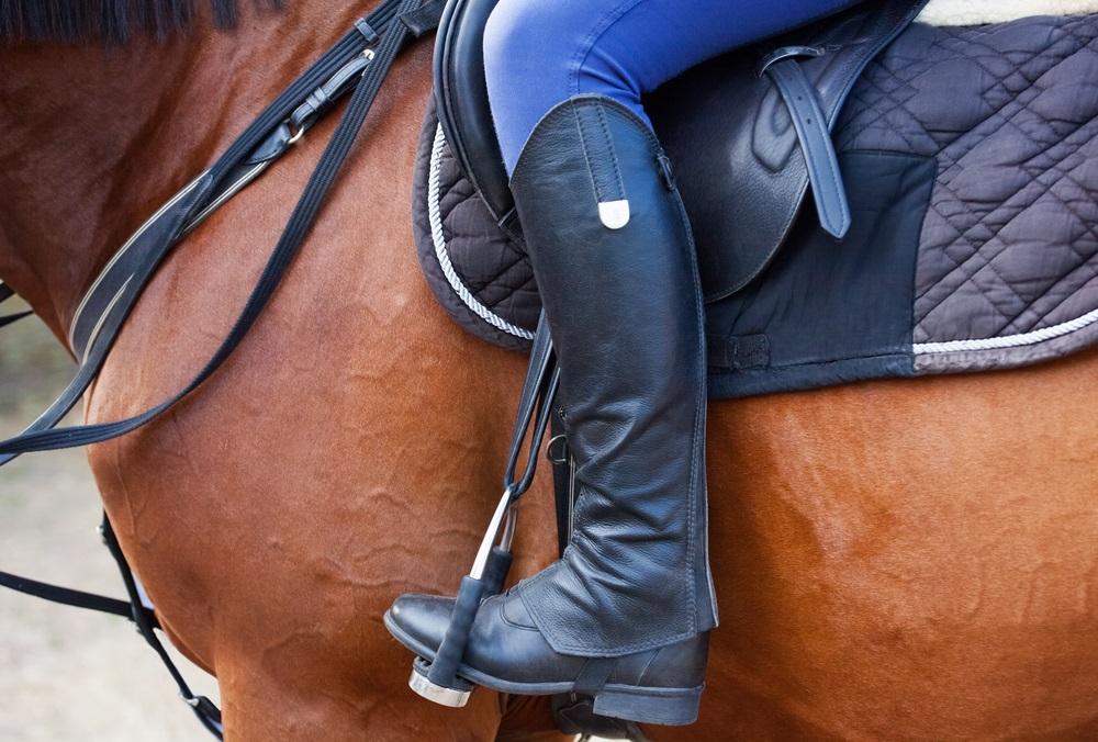 Paardrijlaarzen beste