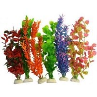 Super Fish Aquarium Plantjes