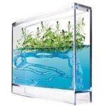 9. Mieren Antquarium Super Aquarium