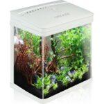 5. Nobleza aquarium - 7L - 23x16x27.5 cm - wit