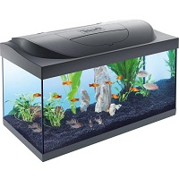 Starter Line aquarium zwart l
