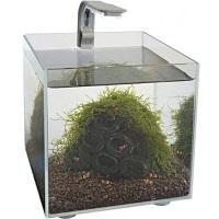 SuperFish Nano Shrimp Kit Aquarium