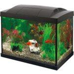 5. SuperFish Start 20 GoldFish Kit - Aquarium
