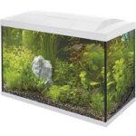 2. Superfish Aqua 70 LED Tropical Aquarium