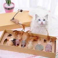 GIZMO Luxe Kattenspeeltjes Set